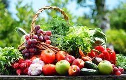 新鲜的有机菜品种在庭院里 免版税库存图片