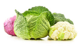 新鲜的有机菜品种在白色的 库存图片