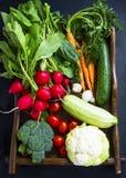 新鲜的有机菜用红萝卜,花椰菜,硬花甘蓝, 库存照片