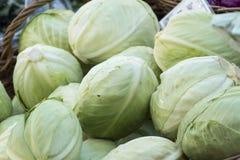新鲜的有机菜-堆在一个篮子的圆白菜在a 免版税图库摄影