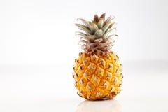 新鲜的有机菠萝 免版税库存照片