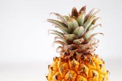 新鲜的有机菠萝 免版税图库摄影