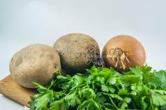 新鲜的有机葱、甜菜、被隔绝的土豆和荷兰芹 免版税库存图片