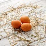 新鲜的有机鸡蛋 库存照片