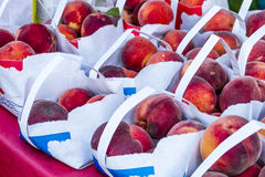 新鲜的有机水果和蔬菜在农夫市场上 免版税库存图片