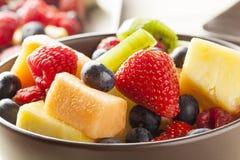 新鲜的有机水果沙拉 库存照片