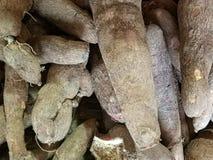 新鲜的木薯待售在纳闽市场上 免版税图库摄影