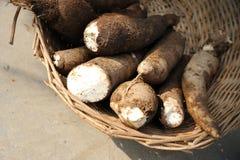 新鲜的木薯 免版税库存照片