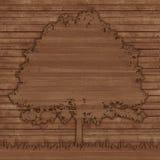 新鲜的木头踪影在一棵老树的 库存照片