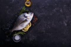 新鲜的未加工的海鲷 库存图片