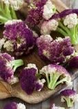 新鲜的未加工的紫色花椰菜 免版税库存图片
