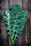 新鲜的未加工的绿色superfood无头甘蓝卷曲圆白菜离开 免版税图库摄影
