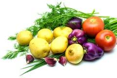 新鲜的未加工的蔬菜的分类在白色背景的 选择包括土豆、蕃茄、葱、胡椒、大蒜和莳萝 免版税库存图片