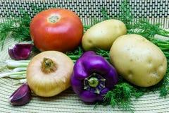 新鲜的未加工的蔬菜的分类在餐巾的 选择包括土豆、蕃茄、葱、胡椒、大蒜和莳萝 免版税库存图片