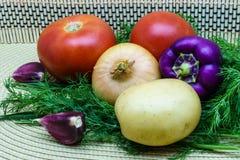 新鲜的未加工的蔬菜的分类在餐巾的 选择包括土豆、蕃茄、葱、胡椒、大蒜和莳萝 免版税库存照片