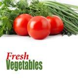 新鲜的未加工的蕃茄、葱、荷兰芹和莳萝 图库摄影