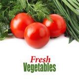 新鲜的未加工的蕃茄、葱、荷兰芹和莳萝 库存图片
