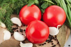 新鲜的未加工的蕃茄、葱、荷兰芹和莳萝 免版税库存照片