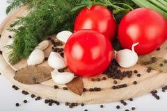 新鲜的未加工的蕃茄、葱、荷兰芹和莳萝 免版税库存图片