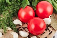 新鲜的未加工的蕃茄、葱、荷兰芹和莳萝 库存照片
