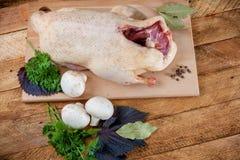 新鲜的未加工的鸭子蘑菇 免版税库存图片