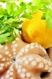新鲜的未煮过的章鱼 免版税库存图片