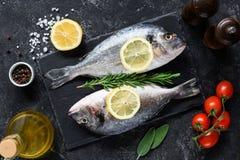 新鲜的未煮过的dorado或海鲷鱼与柠檬切片、香料、草本和菜 bufala食物意大利地中海无盐干酪 顶视图 免版税库存照片