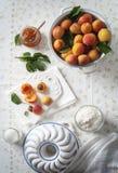 新鲜的杏子准备好蛋糕 免版税库存图片