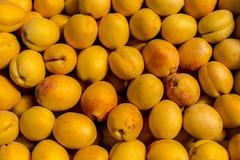 新鲜的杏子黄色摘要果子五颜六色的样式纹理背景 免版税库存图片
