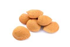 新鲜的杏仁堆在壳的 免版税库存图片
