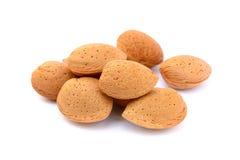 新鲜的杏仁堆在壳的 免版税图库摄影