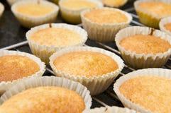 新鲜的杯形蛋糕 免版税库存照片