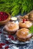 新鲜的松饼和蔓越桔果汁饮料有黑暗的背景和分支树 免版税库存照片