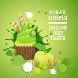 新鲜的松饼选择您的口味商标蛋糕甜美丽的杯形蛋糕点心可口食物 库存例证