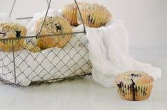 新鲜的松饼 免版税库存照片
