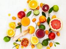 新鲜的柑橘水果和汁液 免版税库存照片
