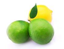 新鲜的柑橘 免版税库存图片