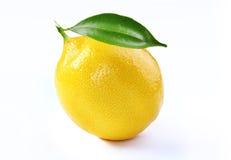 新鲜的柠檬和叶子被隔绝的白色背景 库存照片