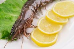新鲜的柠檬虾 免版税库存图片