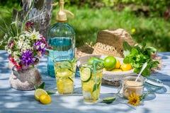 新鲜的柠檬水在夏天庭院里 免版税库存照片