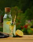 新鲜的柠檬水用薄菏,室外的夏天 图库摄影