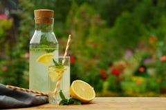 新鲜的柠檬水用薄菏,室外的夏天 免版税库存图片