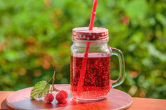 新鲜的柠檬水,束户外莓 库存图片