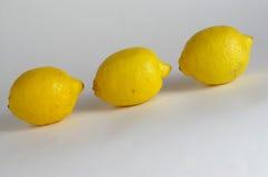 新鲜的柠檬 图库摄影