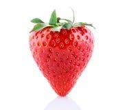 新鲜的查出的草莓 免版税库存照片