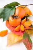 新鲜的柿子 库存图片