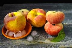 新鲜的桃子和冰,热的夏天概念 免版税库存图片