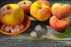 新鲜的桃子和冰,热的夏天概念 库存照片