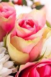 新鲜的桃红色和白花花束  库存图片