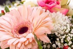 新鲜的桃红色和白花花束  免版税图库摄影